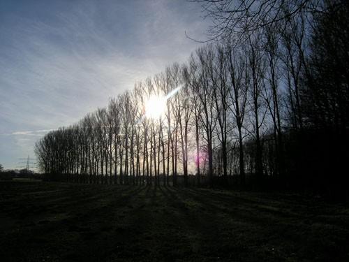 03-Ch-Griemert.jpg