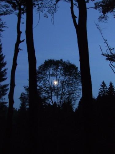 Mondschein am Toensberg.jpg